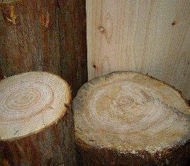 편백통나무(지름 20 Cm ~ 22 Cm)/3fish 편백나무 목재